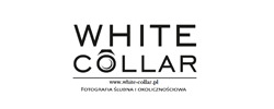 whitecollarstudio